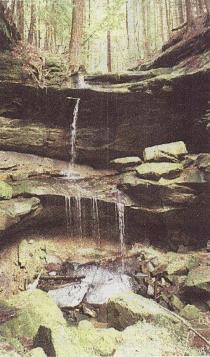 Canters  Cave falls