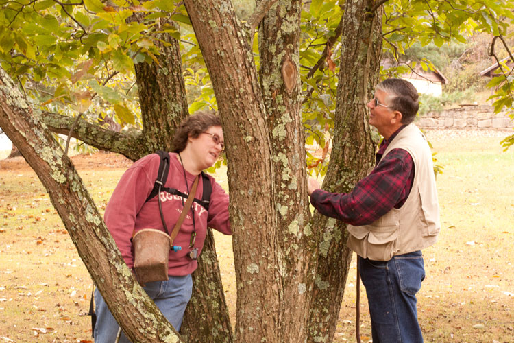 OMLA members examine tree bark for lichens