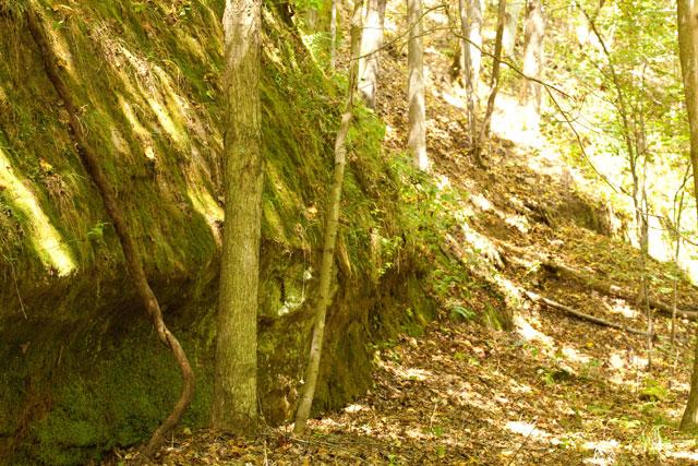 sandstone-cliff-OMLA-Shade-