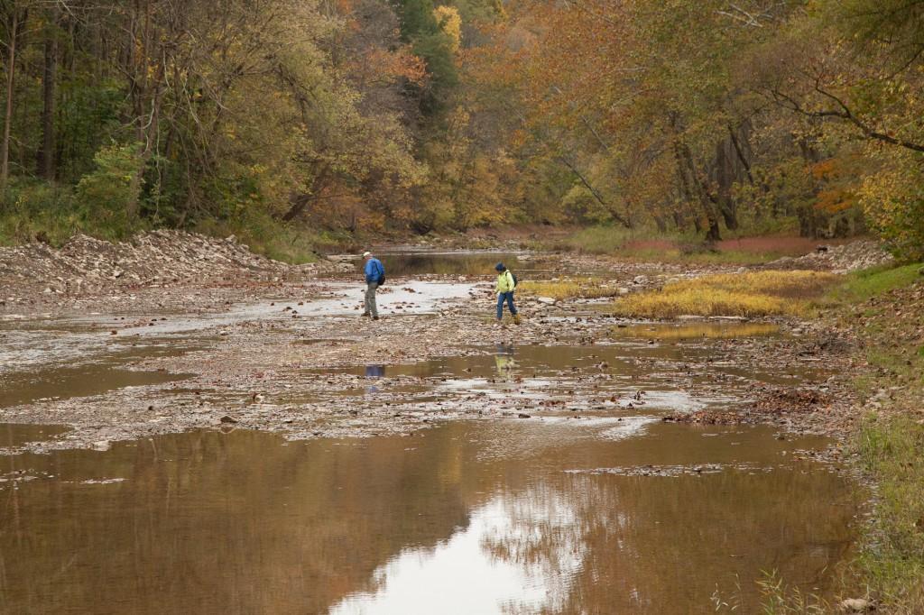 Jim and Janet hunt for aquatic bryophytes at Piatt Park, Monroe County, Ohio.