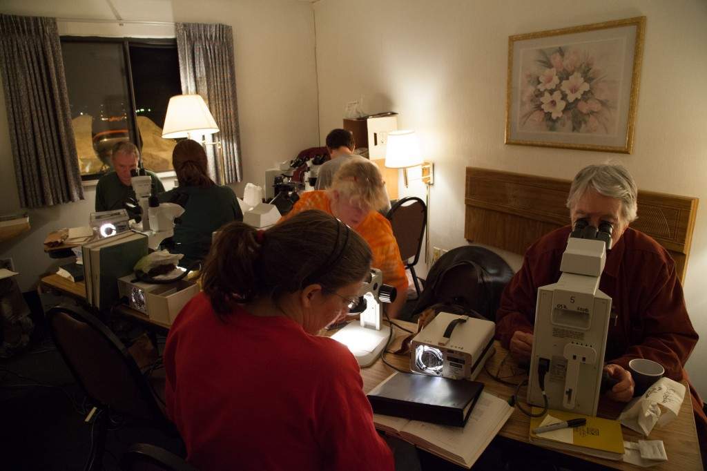 The scope room is a specimen identification lab.