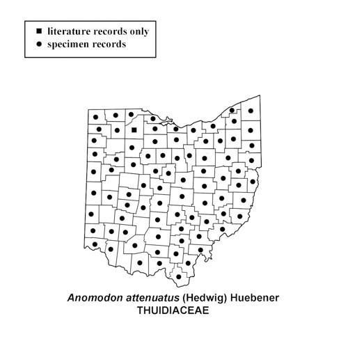 Anomodon-attenuatus-simplemap