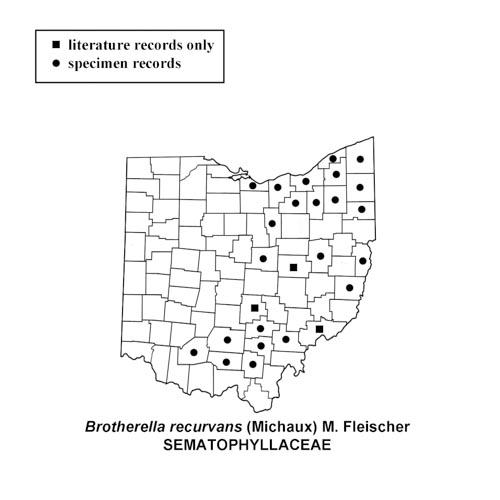 Brotherella-recurvans-simplemap