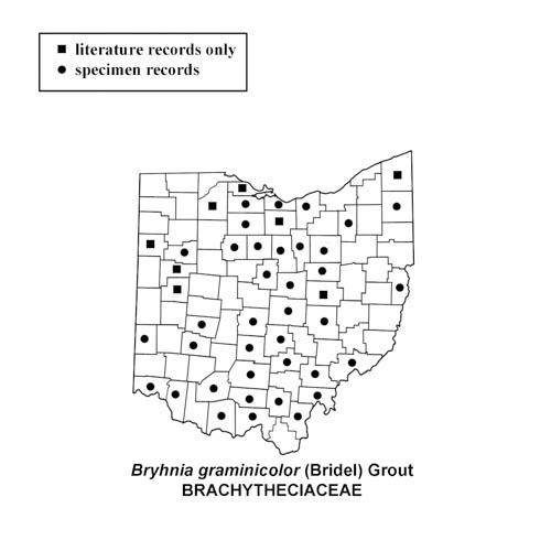 Bryhnia-graminicolor-simplemap