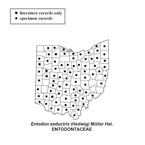 Entodon-seductrix-simplemap