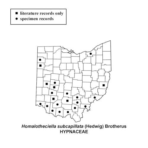 Homalotheciella-subcapillata-simplemap
