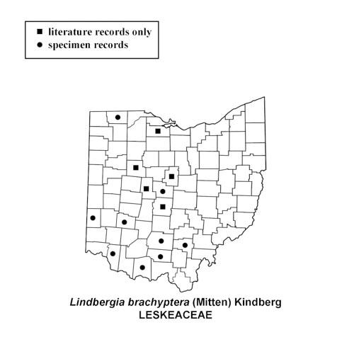 Lindbergia-brachyptera-simplemap
