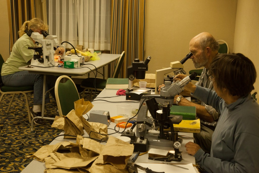 The OMLA Saturday night scope room is great fun!