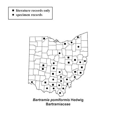 Bartramia-pomiformis-simplemap