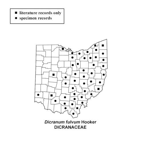 Dicranum-fulvum-simplemap