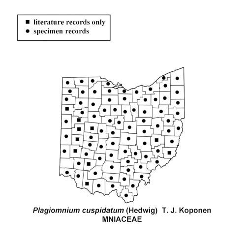 Plagiomnium-cuspidatum-simplemap
