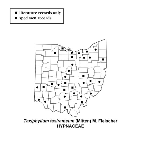 Taxiphyllum-taxirameum-simplemap