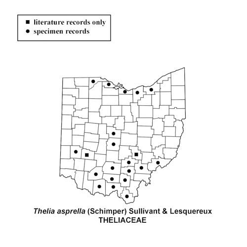 Thelia-asprella-simplemap