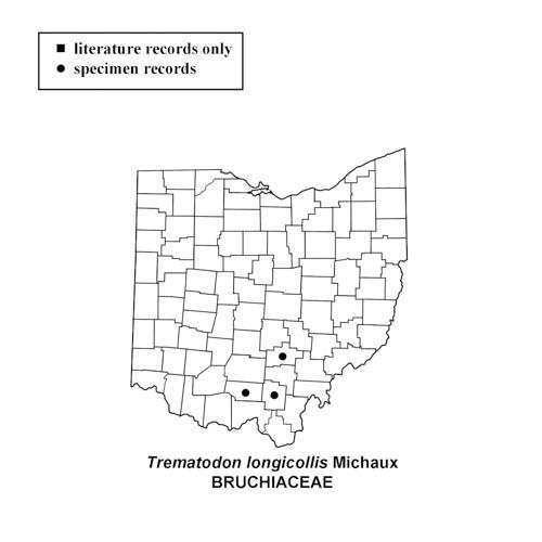 Trematodon-longicollis-simplemap