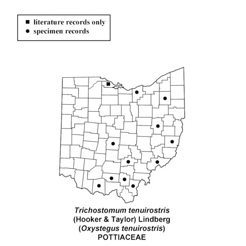 Oxystegus-tenuirostris-simplemap
